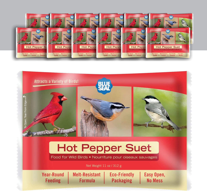 Blue Seal 11oz Year Round Premium Hot Pepper Suet Cake 12pk
