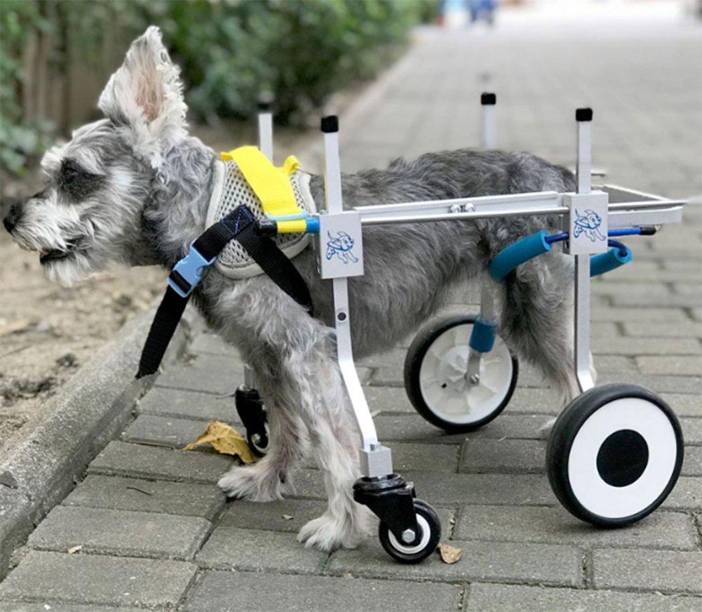 4 Ruedas Apoyo Completo Mascota Perro Silla De Ruedas Carro Movilidad Patas Traseras Ayuda De Rehabilitación: Amazon.es: Deportes y aire libre