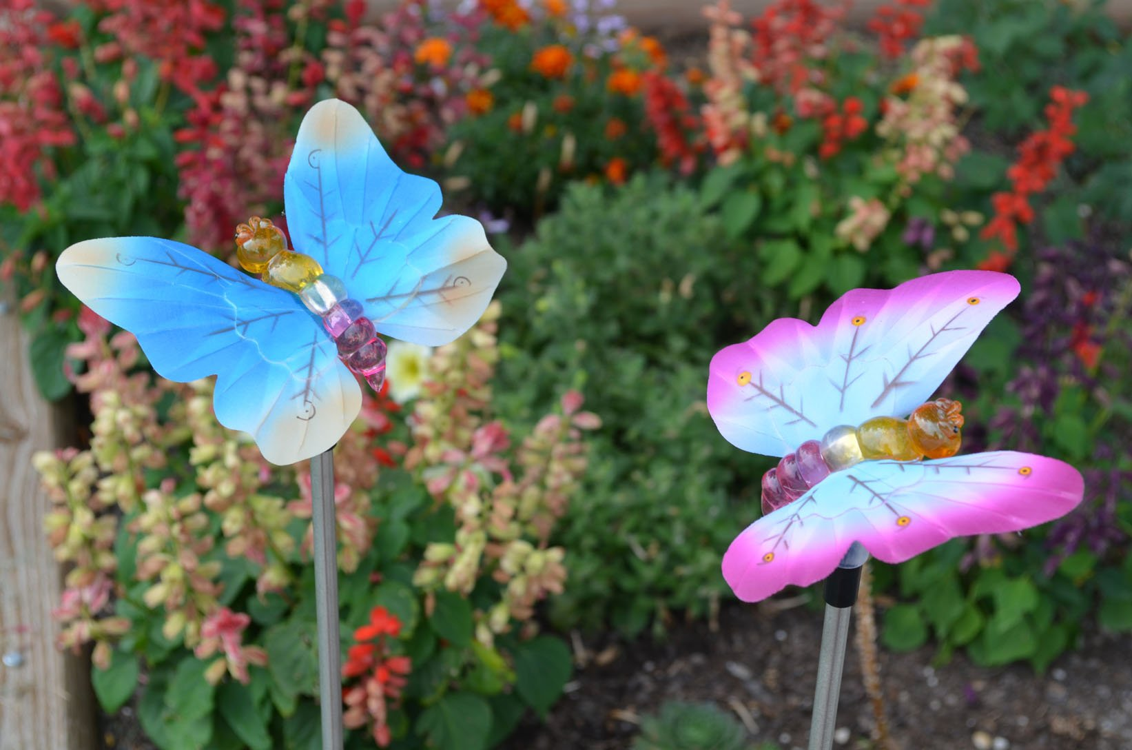 Solar Fiber Optic Butterflies of Two - Blue and Pink