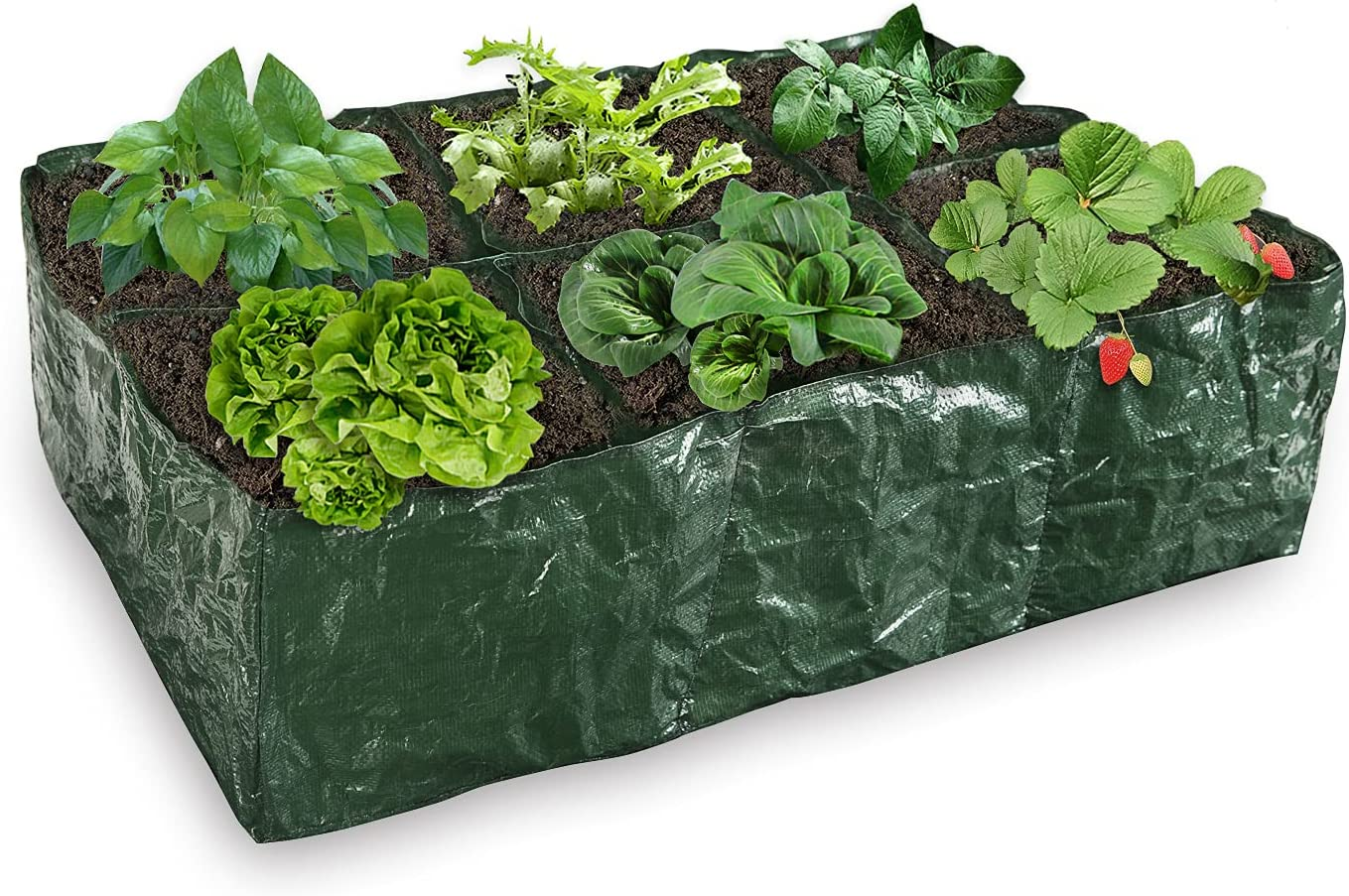 Hemeto 35 Gallons Raised Garden Planter Fabric Bed, 6 Divided Grids Durable Square Planting Grow Pot for Potato Carrot Onion Herb Flower and Other Vegetables