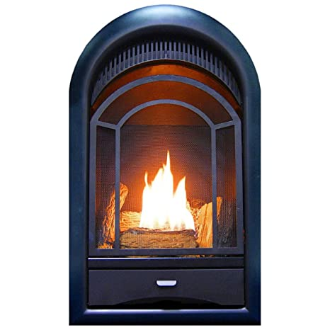 Peachy Procom Heating Pcs150T Ventless Fireplace Insert Thermostat Control Arched Door Medium White Beutiful Home Inspiration Truamahrainfo