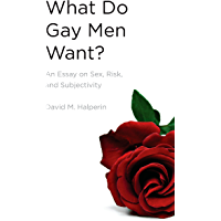 What Do Gay Men Want?: An Essay on Sex, Risk, and Subjectivity (English Edition)