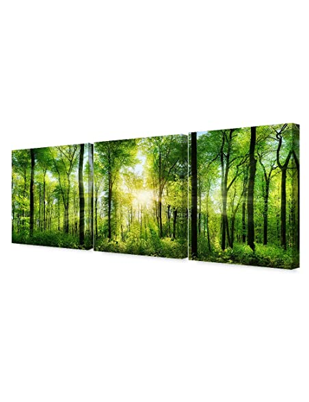 Amazon.com: DecorArts - Canvas Prints Wall Art -The scenic forest of ...