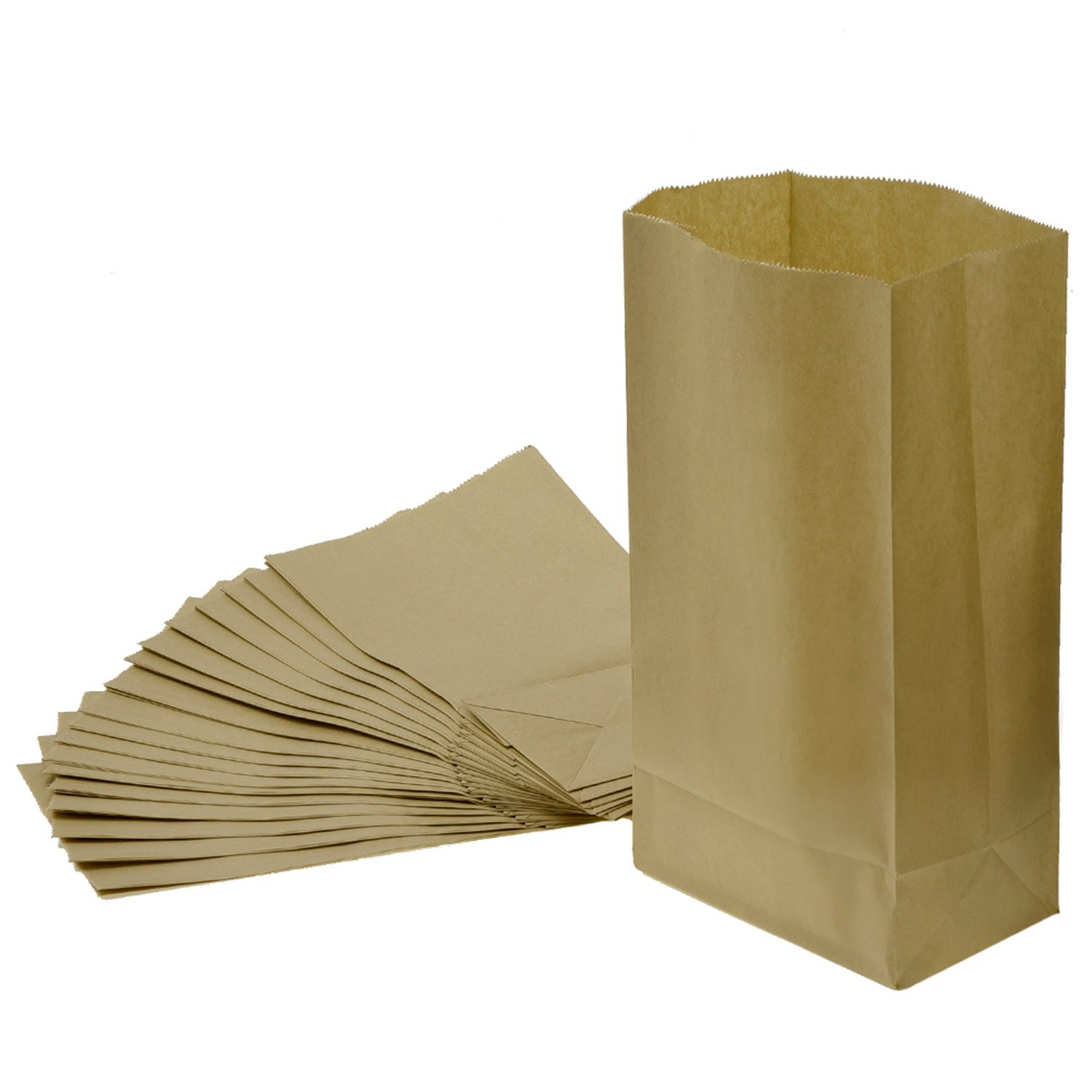 Grocery Bag Kraft Paper Bag Party Lunch Flat Bottom Paper Bag, 20 Count (S, Brown) eBoot
