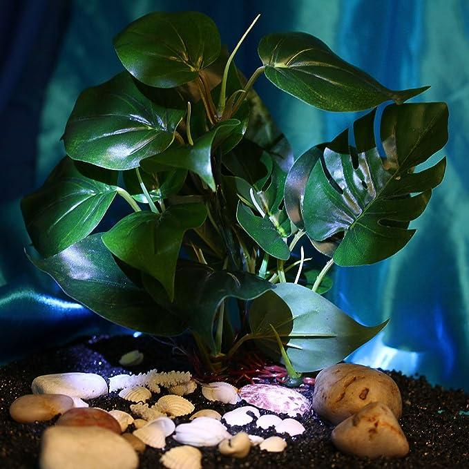 FACILLA®Planta Artificial Plástico Decoración para Acuario Pecera Colores Elegibles 15-20CM (Hoja-ancha): Amazon.es: Hogar