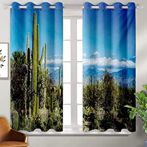 June Gissing Desert Bedroom partition Curtain Wide View of The Tucson Countryside with Cacti Rural Wild Landscape Arizona Phoenix Curtain Curtain W55 x L39 Green Blue