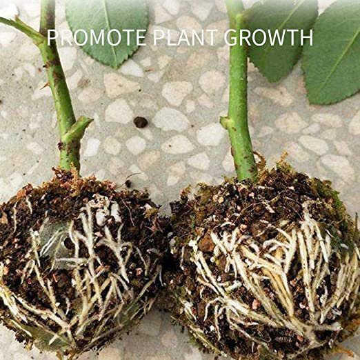 Plant Root Box Plant Growing Box Refining Ball Reusable Plant Root Device high Pressure Box