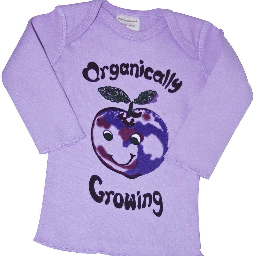2019新作モデル Ecobaby Organics SHIRT ユニセックスベビー Organics パープル(Purple SHIRT Plum) B0767PP6NP B0767PP6NP, シルバーアクセサリーSies Rosso:c9bed32d --- narvafouette.eu