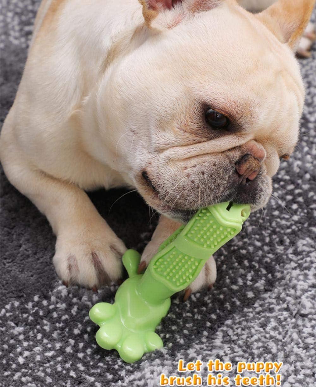 Juguete para perros Cepillo de dientes Perro pequeño MedianoPerro ...