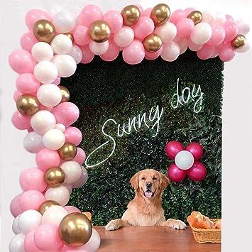 Amazon.com: Kit de arco de guirnalda de globo rosa, 112 ...