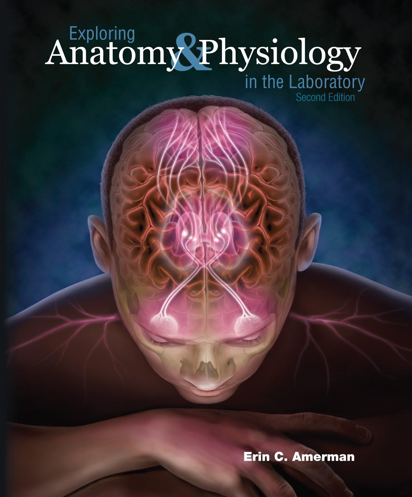 Exploring Anatomy: Erin Amerman: 9781617310560: Anatomy & Physiology ...