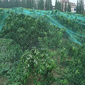 Garden Bird Net Green Anti Bird Netting Mesh Plants Flowers Mesh Fence Protect Fruit Vegetables from Birds Insect Barrier Netting, 13FT x 33FT