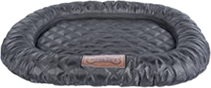Bone Dry Border Cushion Padded Pet Mat