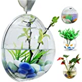 Wall Hanging Fish Bowl Fish Tank Water Plant Vase Mini Bubble Aquarium For Home Decoration by Bellagione
