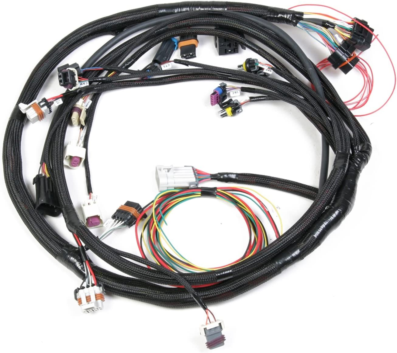 Amazon.com: Holley 558-103 LS2 Main Harness: AutomotiveAmazon.com