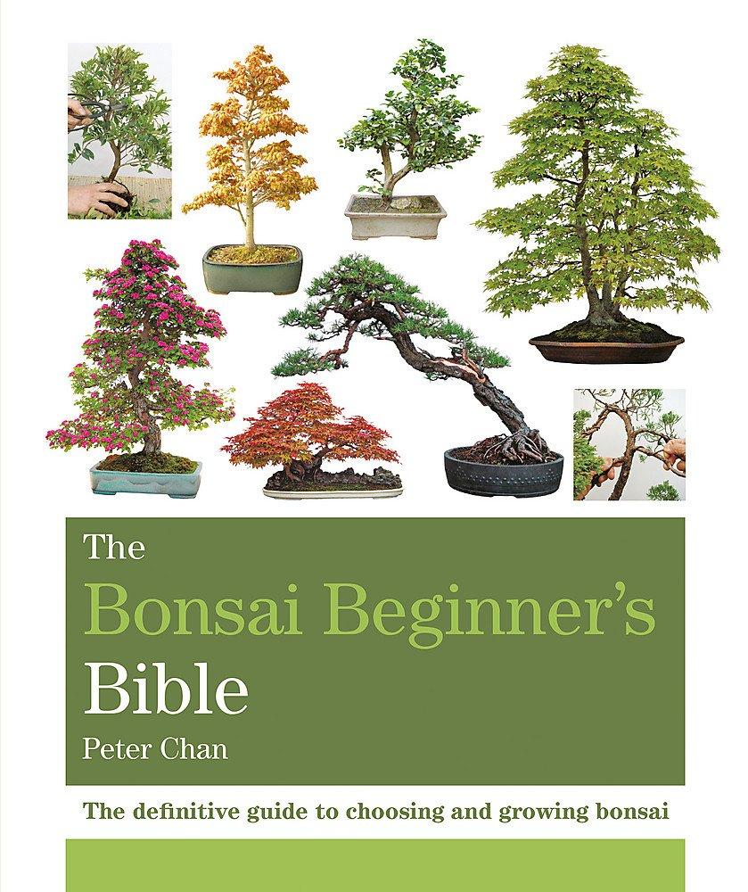 The Bonsai Beginner's Bible (Octopus Bible Series)