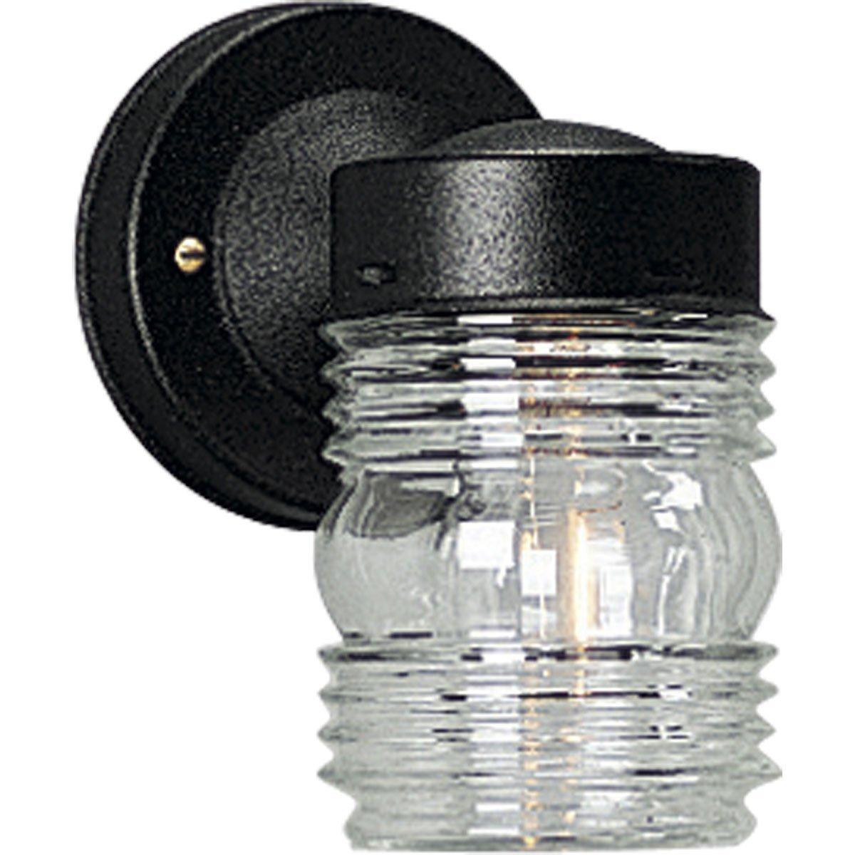 Progress Lighting P5602-31 Powder-Coated Finish Clear Marine Glass, Black