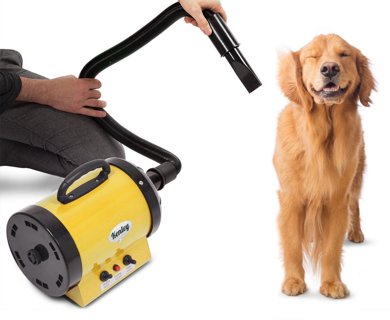 Kenley-Stendibiancheria secca, setole di toelettatura per animali cani gatti 2400W-calore regolabile, colore  giallo