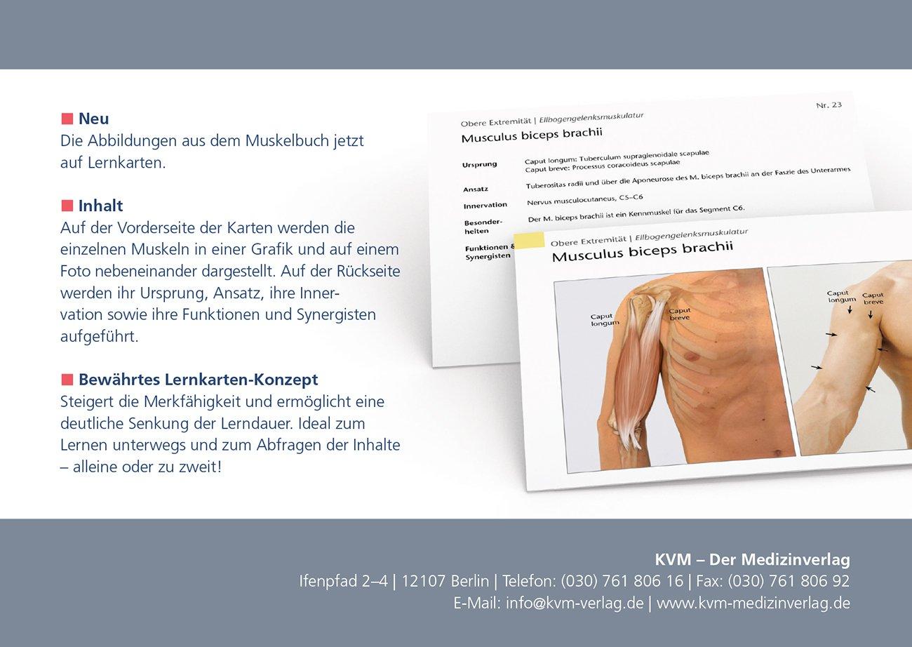 Muskelkarten: Erfassen | Verstehen | Anwenden: Amazon.de: Klaus ...