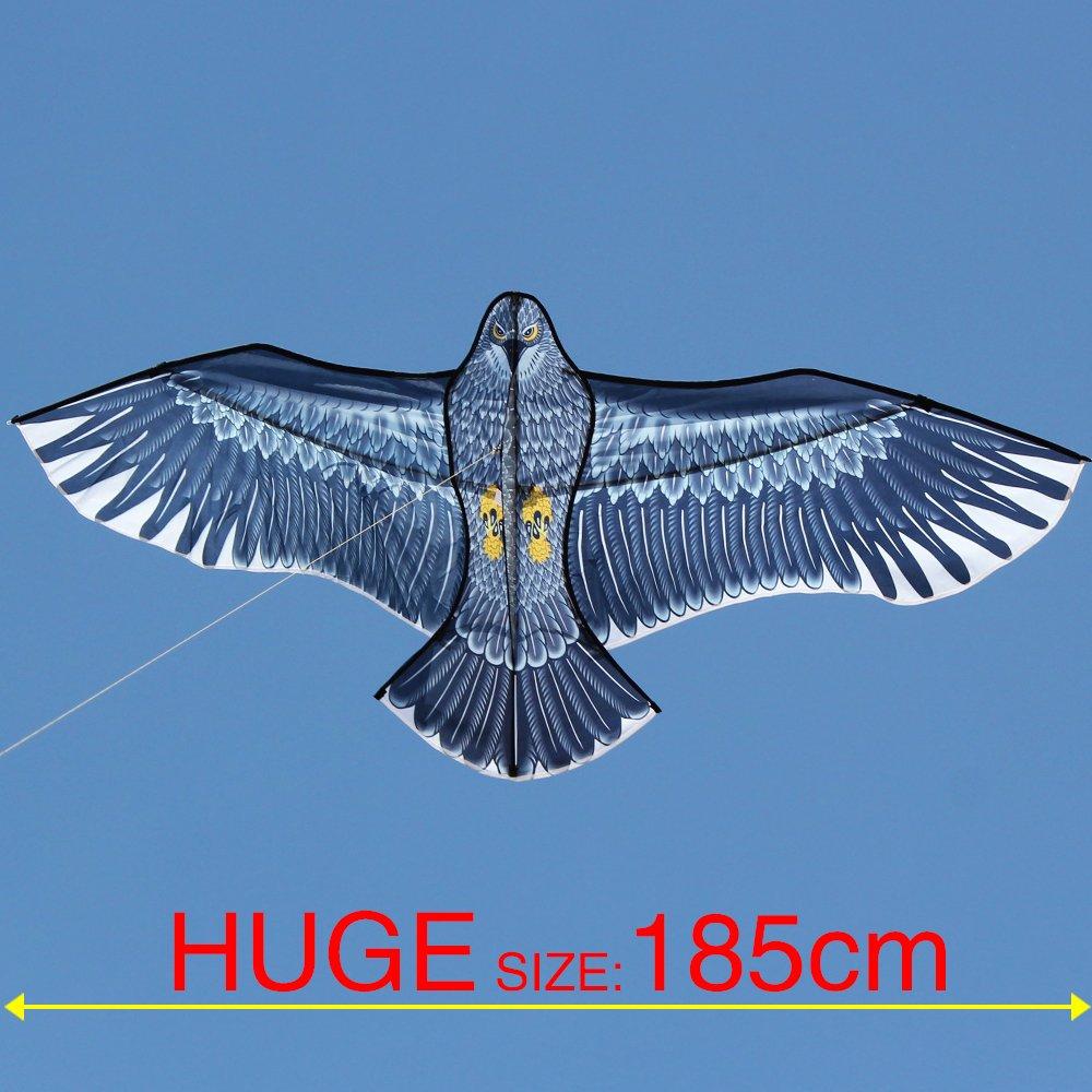 Hengda Kite-Strong Eagles!Huge beginner eagle kites for Kids and Adults.74-Inch by Hengda kite by HENGDA KITE (Image #3)