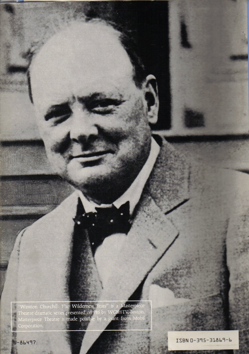 Amazon: Winston Churchill: The Wilderness Years (9780395318690): Martin  Gilbert: Books