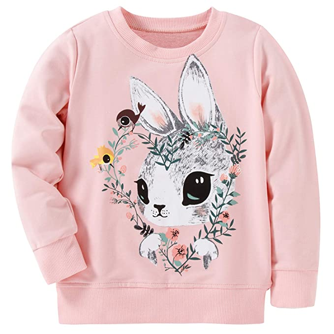 ad5b5d14008d AuroraBaby Toddler Little Girls Sweatshirts Kids Pullover Adorable Long  Sleeve Pink Size 2t