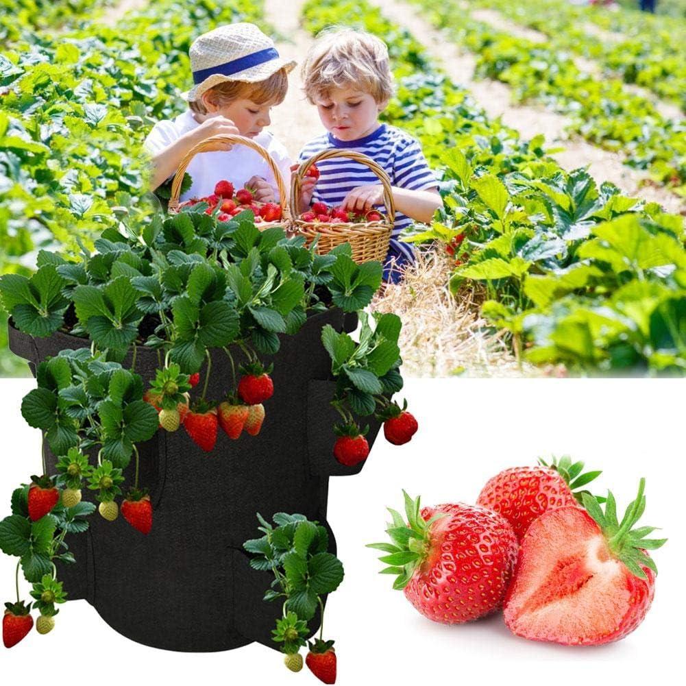 Childlike Pflanzbeutel Outdoor Indoor Pflanzer Erdbeer Begr/ünung Wachsen Tasche Blumenanbaubeh/älter Pflanzbeutel Aus H/ängendem Filz Garten Pflanzengef/ä/ße Taschen