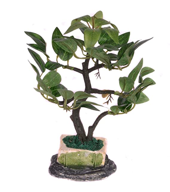 Pindia Decorative Artificial Bonsai Plant with Pot for Home and Office Decor (12x6x16, cms) Artificial Plants at amazon