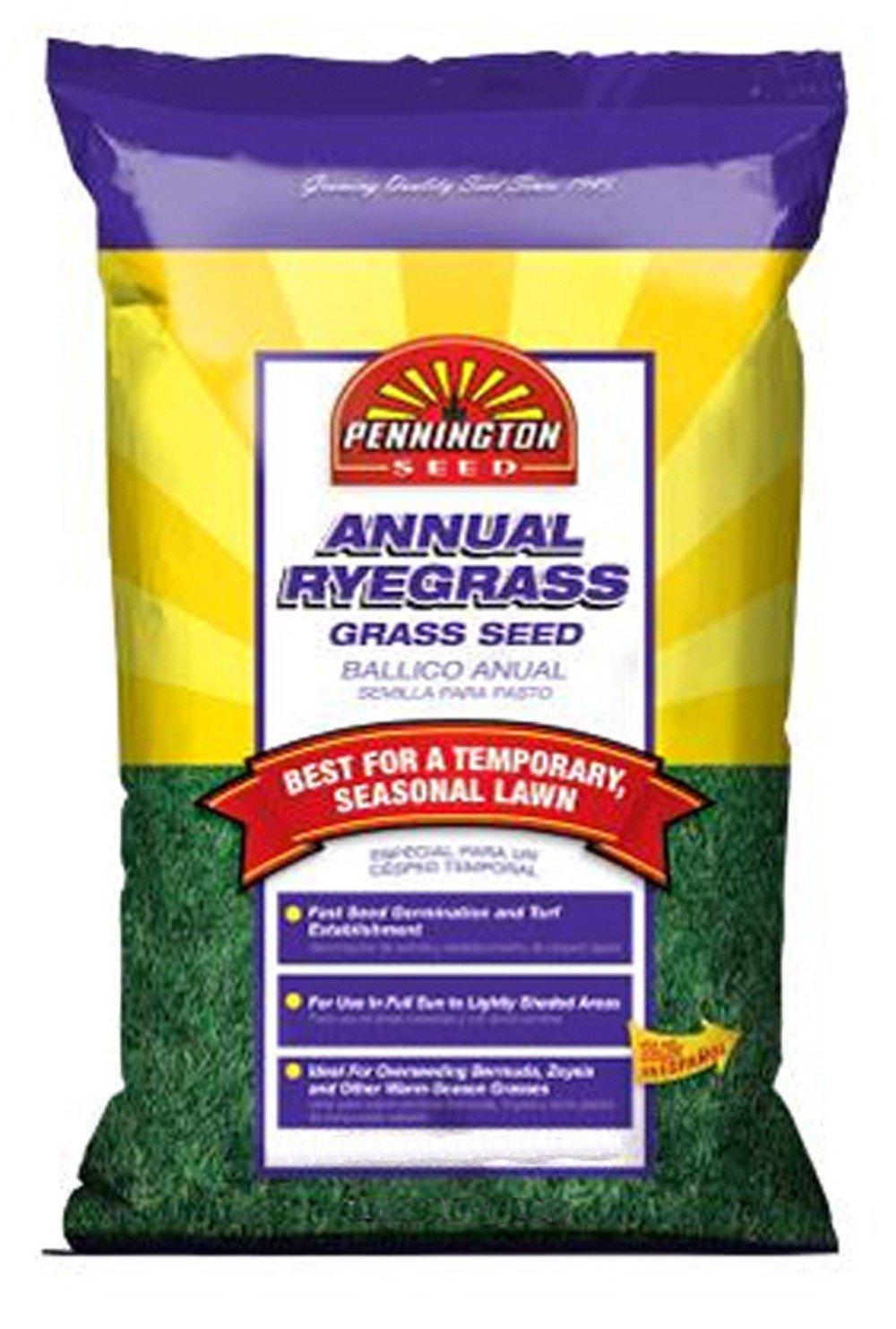 Pennington Annual Ryegrass to Overseed Warm Season Grasses, 10 lb