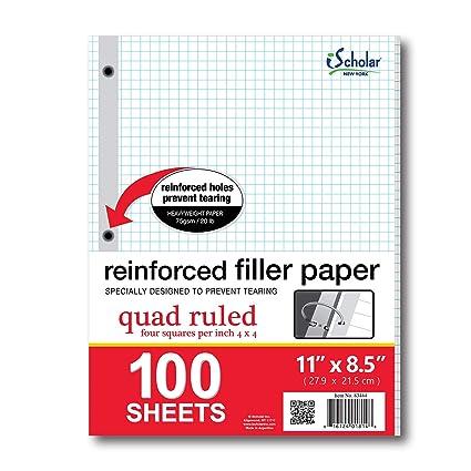 amazon com ischolar reinforced quad filler paper 100 sheets 83444