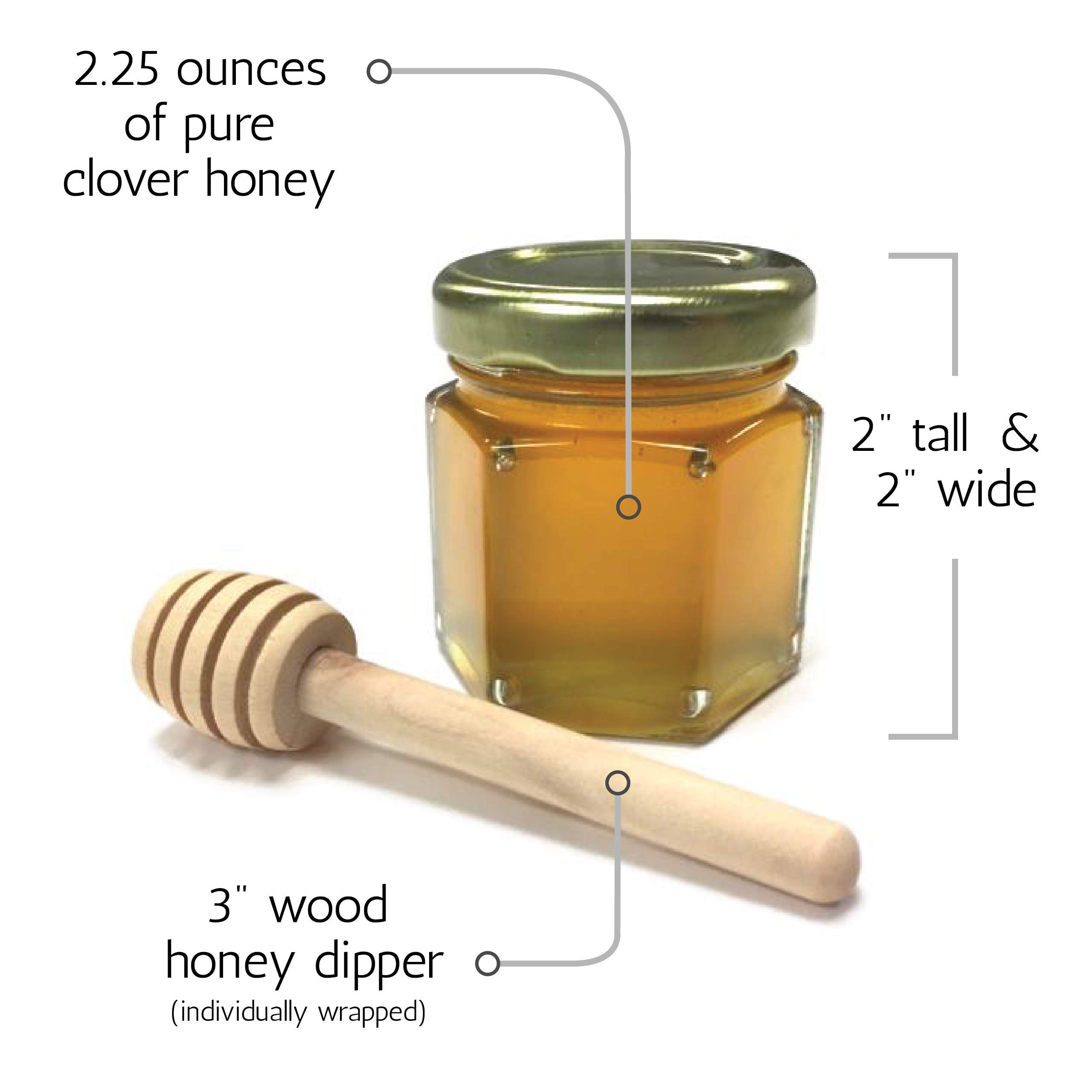 Honey Wedding, Party, Event Favors with 3'' wood honey dipper (Small Glass Jar with no label perfect for DIY Bride, Event Planning, Corporate Gifts) (50 Pack)