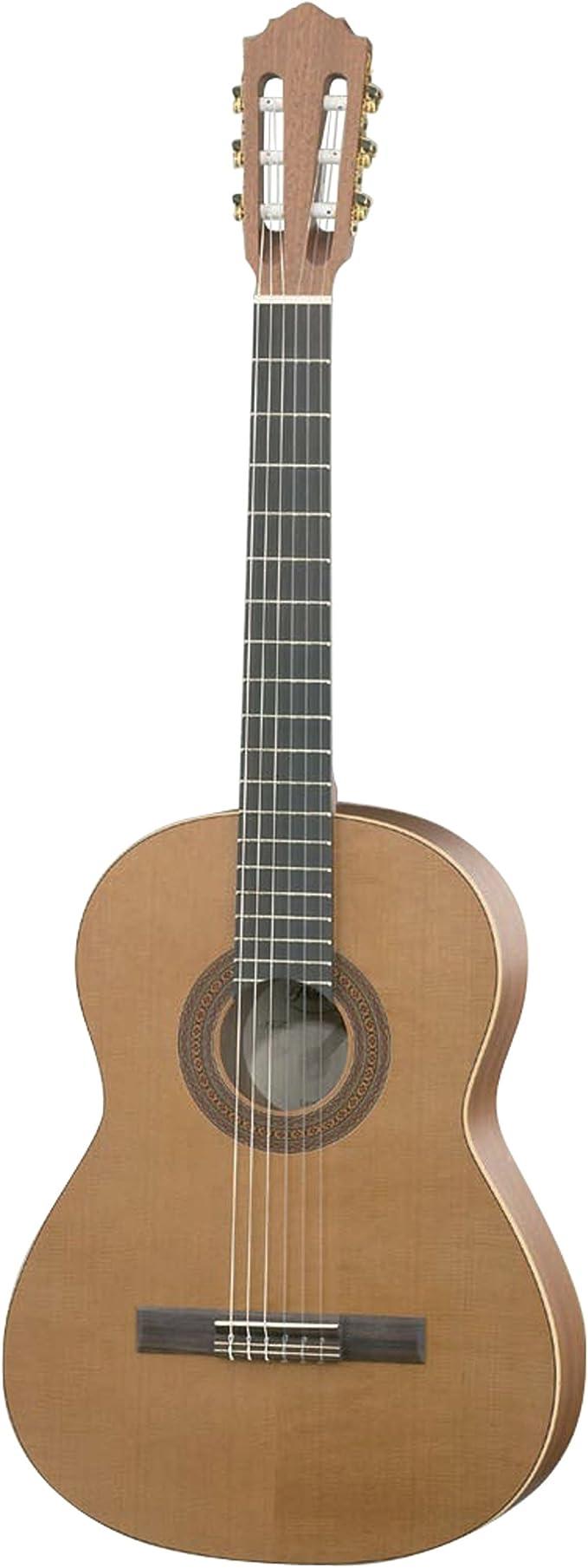 Hofner HZ23 - Guitarra clásica: Amazon.es: Instrumentos musicales