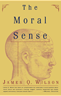 Thinking critically about ethical issues kindle edition by vincent the moral sense free press paperback fandeluxe Choice Image