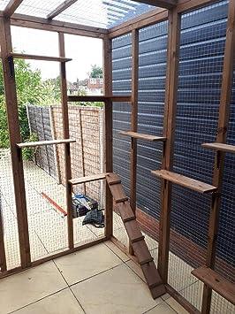 Techo Impermeable Transparente de 4 alambres para Gatos de 9 pies de Ancho x 8 pies de Profundidad x 8 pies de Alto: Amazon.es: Productos para mascotas