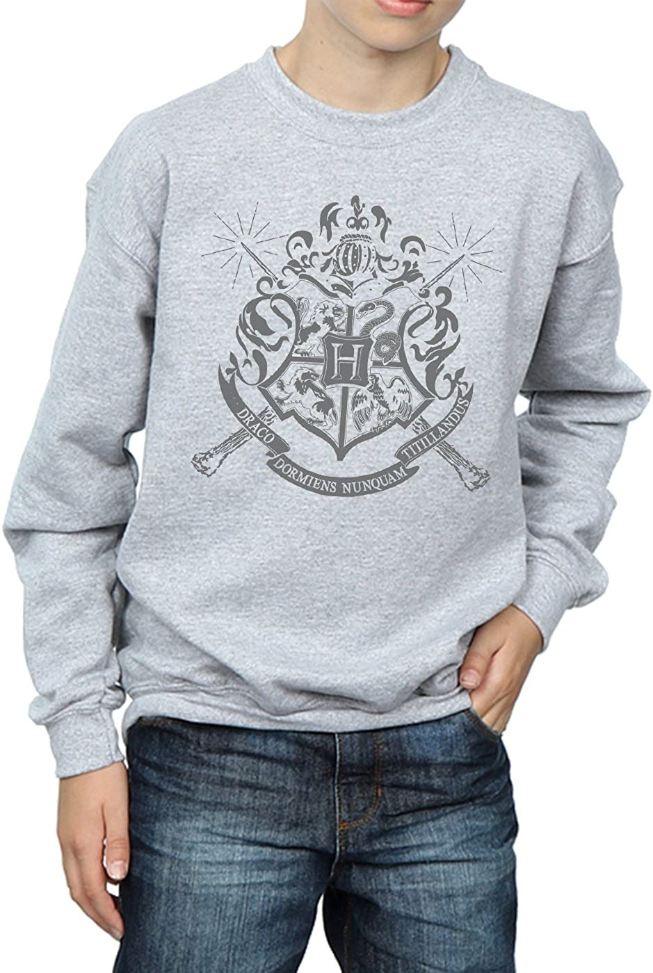 Harry Potter Gar/çon Hogwarts Badge Wands Sweat-Shirt