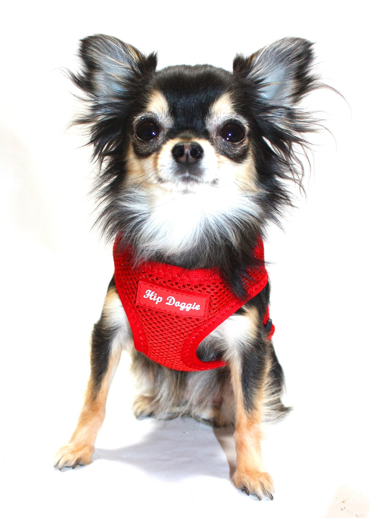 Award Winning, Hip Doggie Ultra Comfort Red Mesh Harness Vest - M