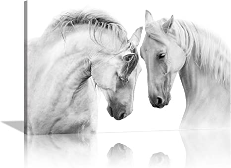 Horse Photography Horse Canvas Wall Art Horse Canvas Home Decor Horse Prints Black and White Prints Wild Horse Prints Photo Art Wall Art