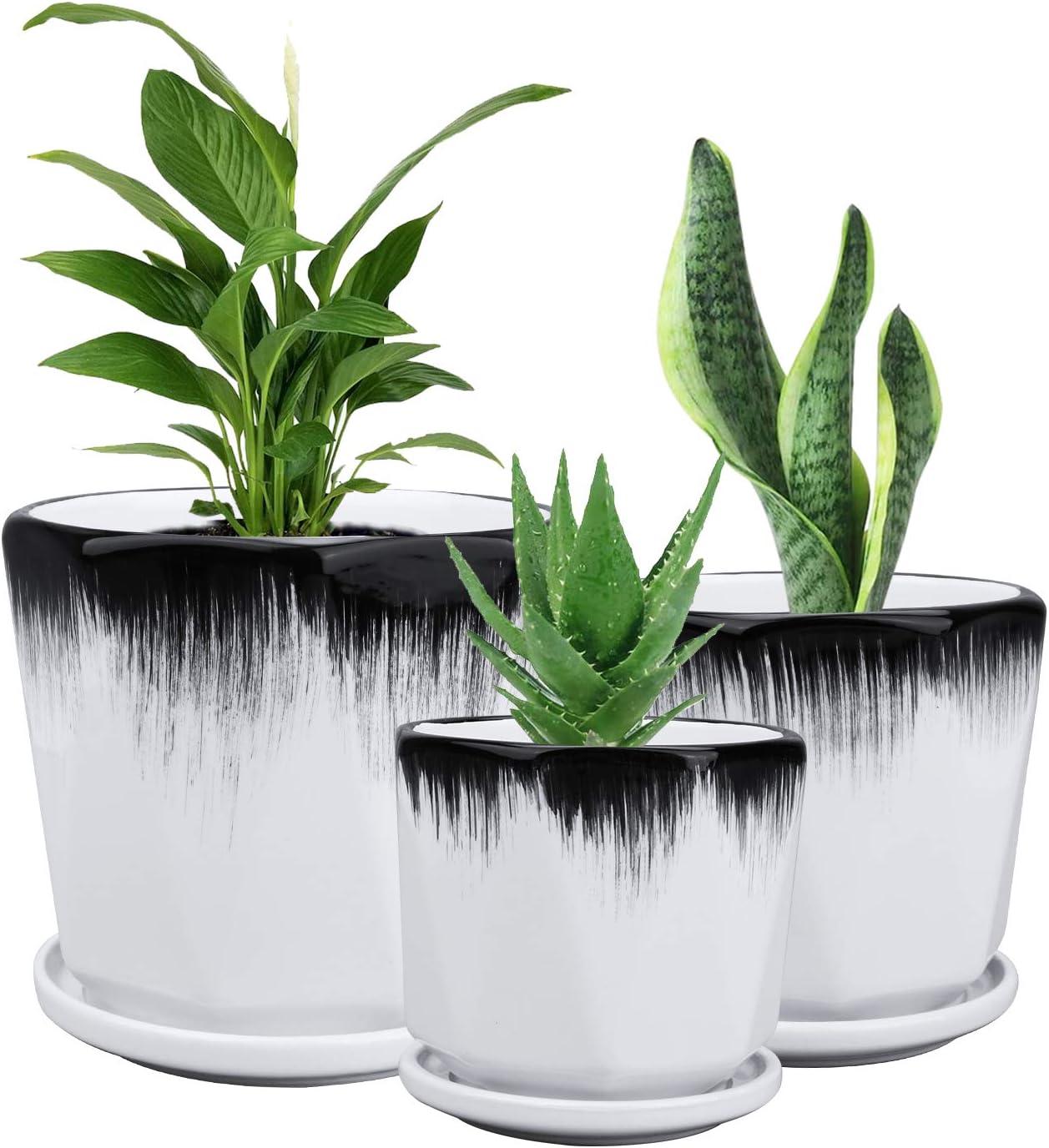 Ufrount Succulent Planter Pots with Drainage Holes, Ceramic Planter Pot Planting Pot Flower Pots for Mini Plant Perfect for Garden, Kitchen, Windowsill - Set of 3 (White)
