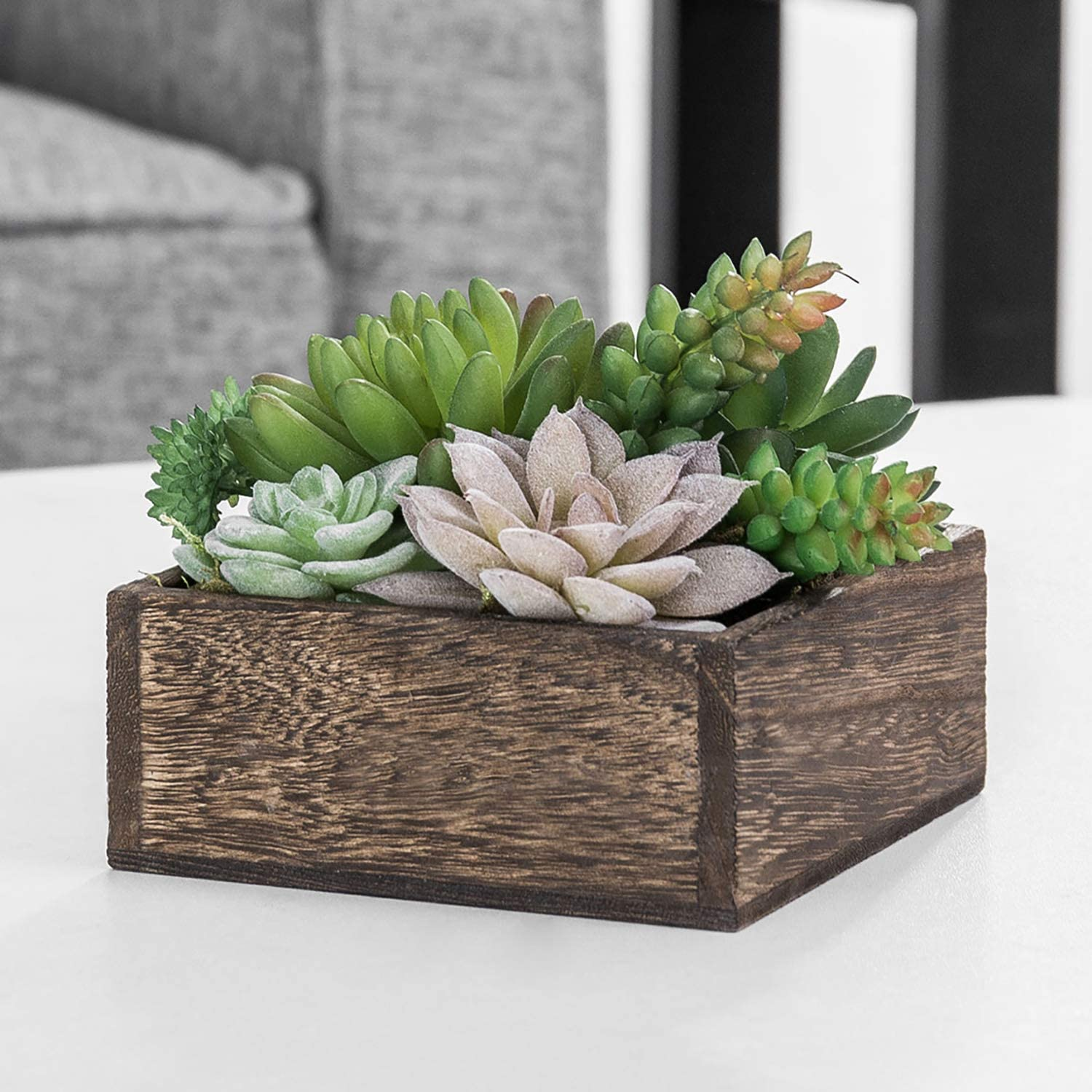 Artificial Green and Brown  Succulent