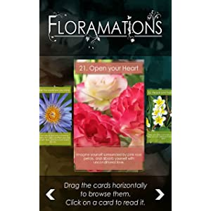 Floramations - Flowers Oracle Cards: Amazon com br: Amazon