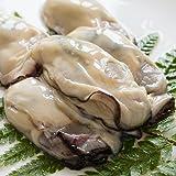 OWARI ジャンボ生剥き牡蠣 冷凍 1kg
