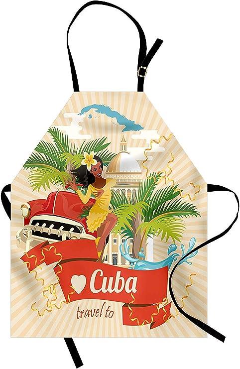 Delantal de La Habana, concepto de cultura y atracciones cubanas ...
