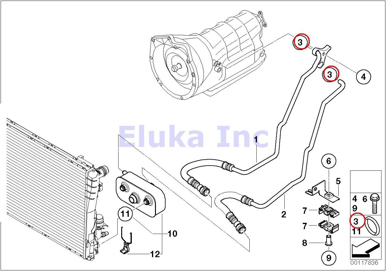 Auto Transmission Oil Cooler Hose 128i 135i X1 35iX Z4 2.5i Z4 3.0i Z4 3.0si Z4 3.0si 128i 135i Z4 30i Z4 35i Z4 35is 323i 325i 325xi 328i 328xi 330i 330xi 335i 335xi 323i 328i 328xi 335i 335xi 325xi 328i 328xi 328i 3 10.82 X 1.78 Mm BMW Genuine O-Ring