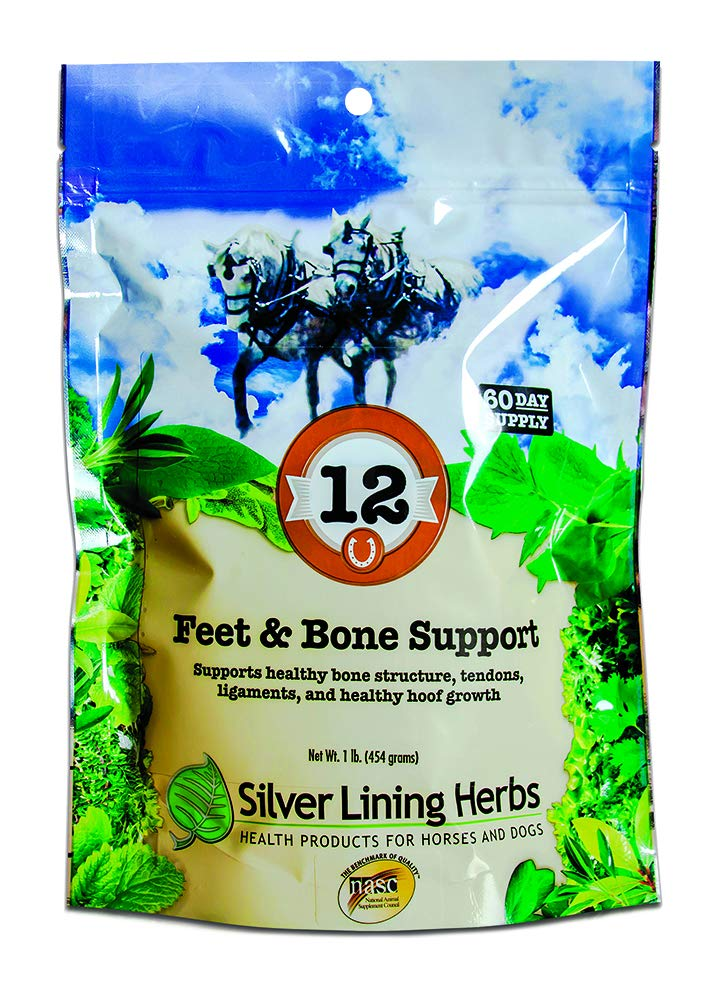 Equine Feet and Bone Support | Supports Healthy Horse Hoof Growth  |  Helps Support Healthy Bones, Tendons and Ligaments | 1 Pound Resealable Bag | Made by Silver Lining Herbs in the USA of Natural Herbs
