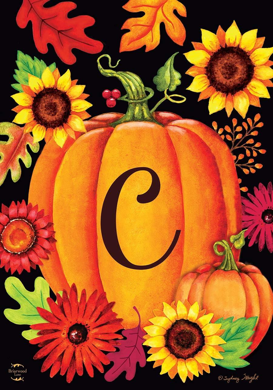 Briarwood Lane Fall Pumpkin Monogram Letter C Garden Flag 12.5