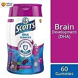Scott's DHA Gummies, Black Currant Flavour, 60s