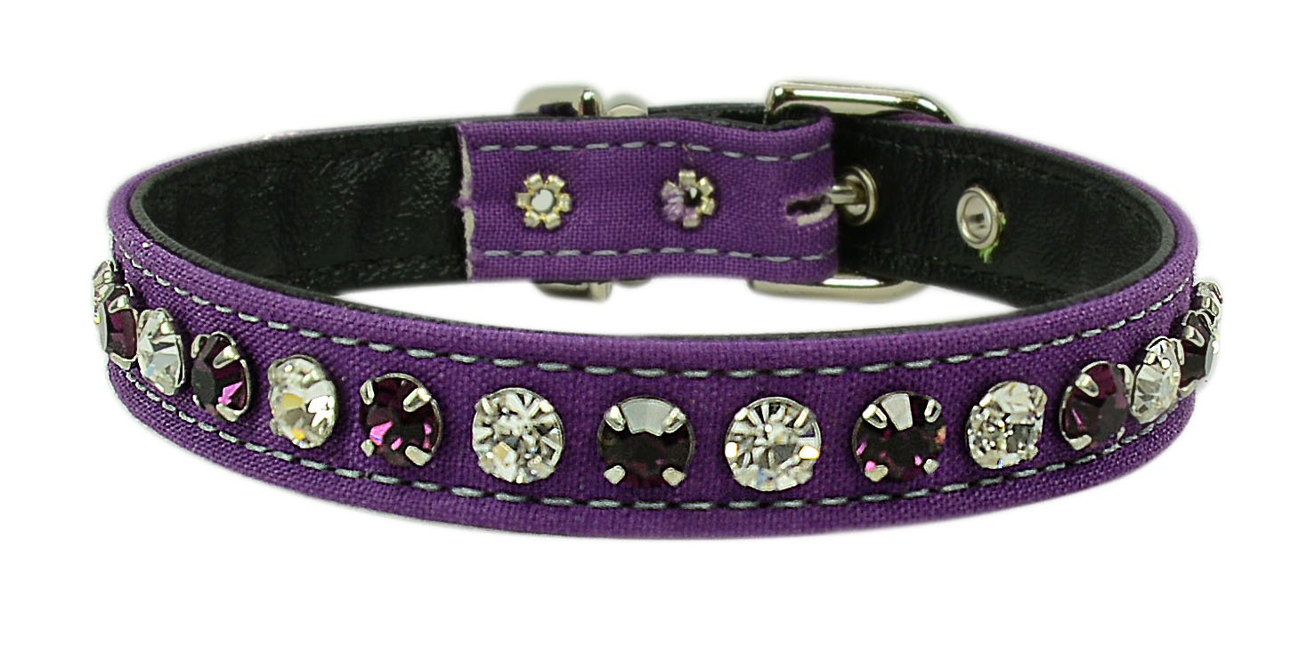 Passion Purple Size 12 Passion Purple Size 12 Evans Collars 1 2  Collar with Alternating Jewel colors, Size 12, Solid Cotton, Passion Purple