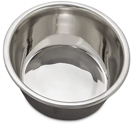Amazon com : Bowlmates by Petco Small Stainless Steel Bowl
