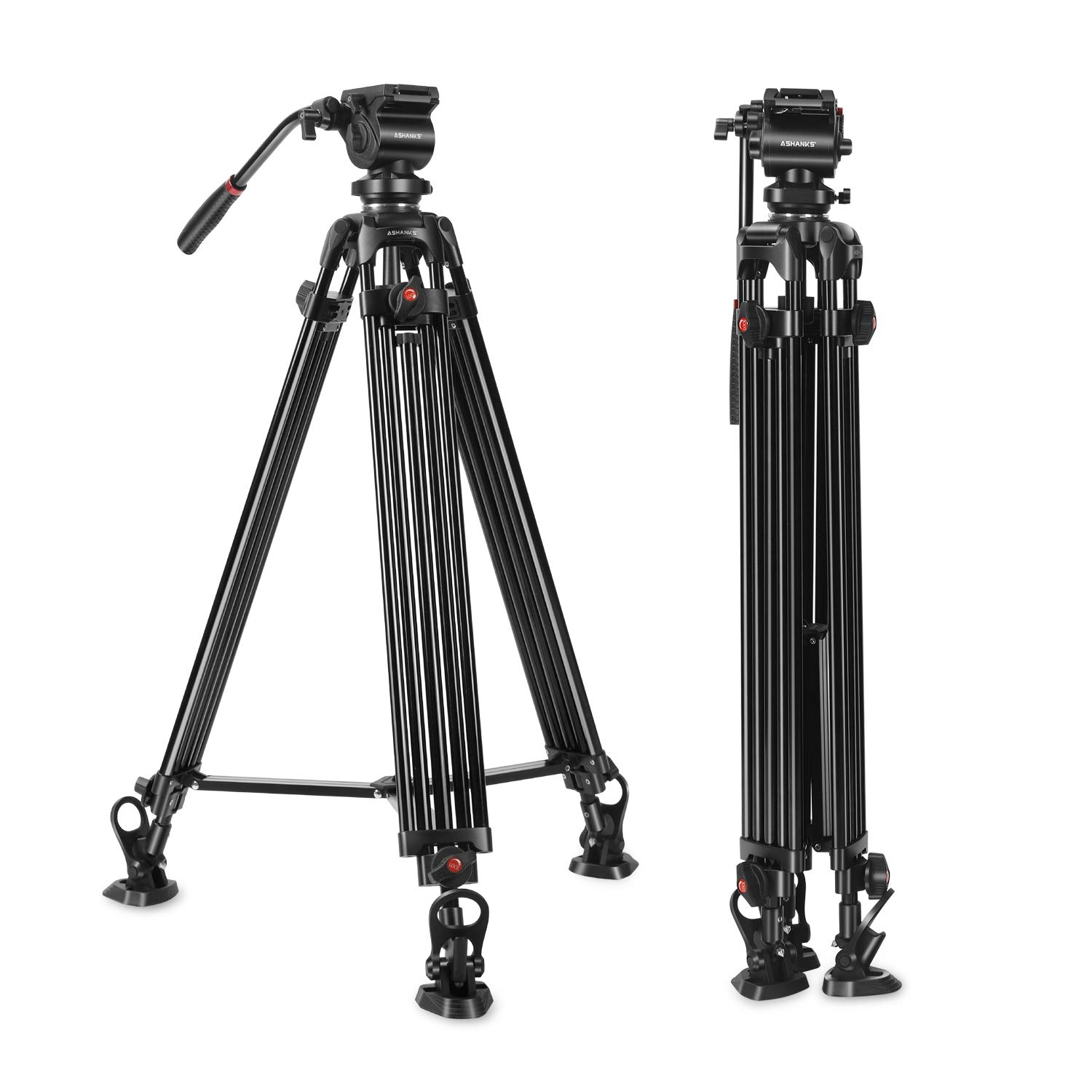ASHANKS Professional Video Tripod,ASHANKS 74inch Fluid Head Tripod for Heavy Camera Camcorder,Quick Release Plate,Horseshoe Rubber Feet, Max Loading 15.4Lb with Carrying Bag