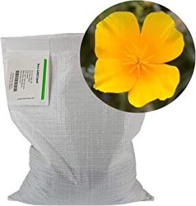 California Poppy Flower Seeds -5 Lb Bulk - Wildflower Garden Seeds - Eschscholtzia californica by Mountain Valley Seed Co
